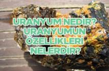 Uranyum nedir? Uranyumun özellikleri nelerdir?