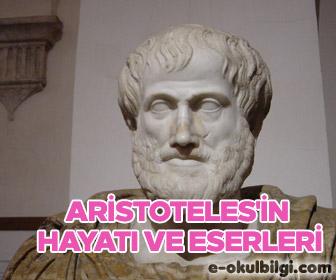 Aristoteliğin Mantığı: Temel İlkeler 32