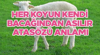 Her koyun kendi bacağından asılır atasözü anlamı