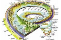 Jeolojik devir özellikleri ve Türkiye'de jeolojik devir