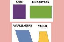 Dörtgenler nelerdir? Dörtgenlerin çeşitleri ve özellikleri